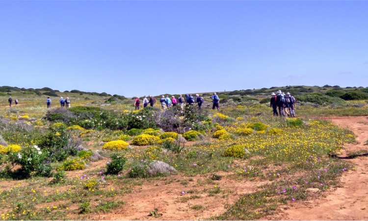 Walking in the West Algarve countryside