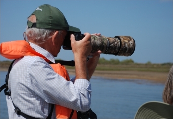 Self-Guided Birdwatching Ria Formosa