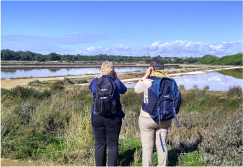 Self-Guided Birdwatching - Watching the Blue Skies of Montegordo